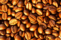 Seattle, Washington coffee bean directory